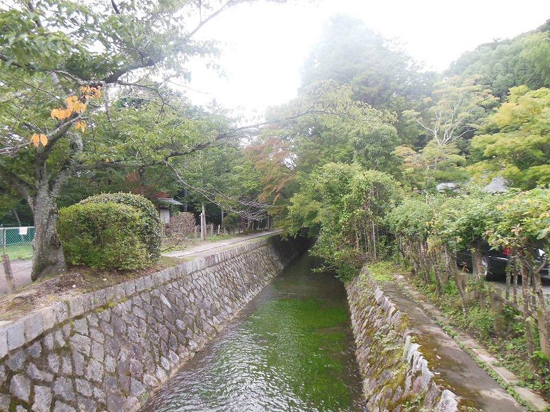 20140901京都哲学の道の風景